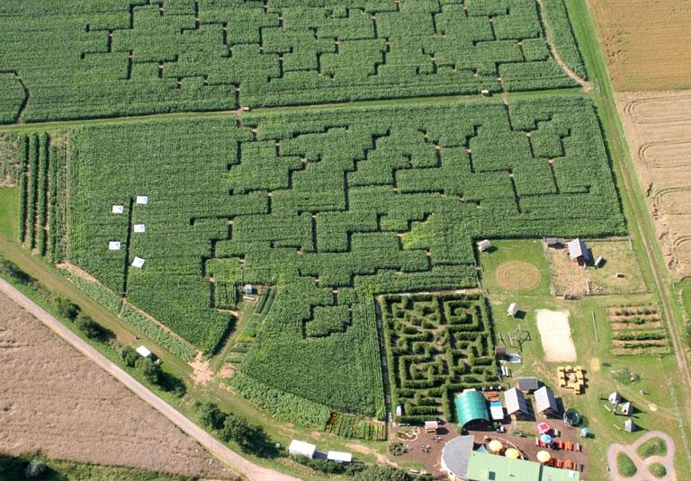 Maislabyrinth Edersee